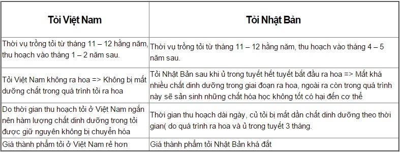 so sánh tỏi Việt Nam và tỏi Nhật Bản